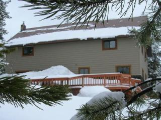 The Gathering Place - Snowmobile straight from cabin! Plenty of room! - Island Park vacation rentals