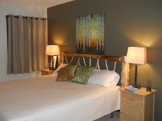 The Northern Light Lodge - Lake Placid vacation rentals