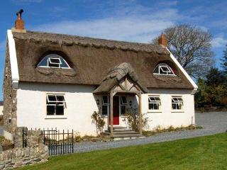 The Thatch - Ramelton vacation rentals