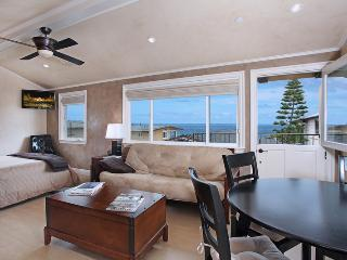 3 - Villa DArte - Laguna Beach vacation rentals