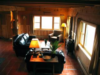 The Cabin at Aspen Ridge - Durango vacation rentals