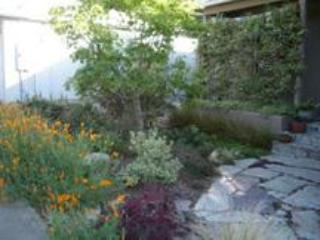 Front walkway - Serene, Eco-Friendly Rooms/House in North Berkeley - Berkeley - rentals