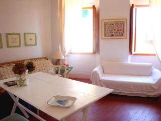 Charming holiday apartment in beautiful Elba - Rio Nell'Elba vacation rentals