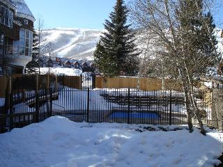 Snowblaze 101. Walk to Ski. On Bus Route. Hot Tub! - Park City vacation rentals