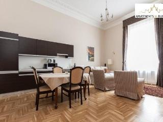 Opera View Apartment-newly refurbished, great view - Budapest vacation rentals