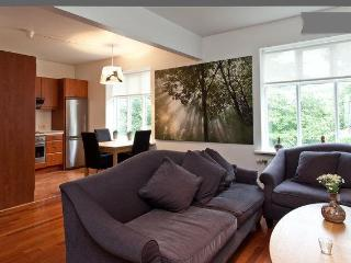 Beautiful 2 bedroom Apartment central Reykjavik - Reykjavik vacation rentals