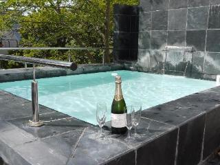DE WATERKANT VILLA in the heart of Cape Town - Cape Town vacation rentals