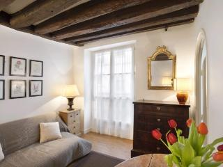 A bright and spacious apartment on the Île de la Cité just a stone's throw from Notre Dame Cathedral - Venice vacation rentals