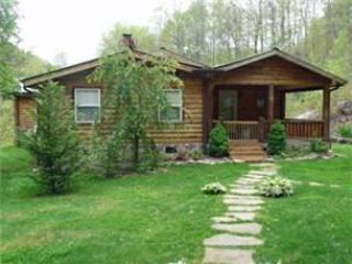 Laurel Lodge - Image 1 - Bryson City - rentals