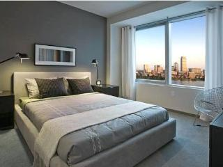1 bedroom apt close to Government Center - United States vacation rentals