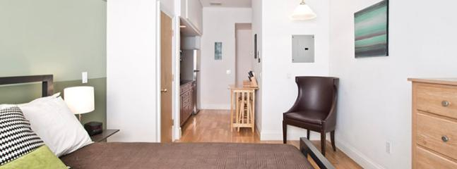Grand Studio Apt Prudential Center/Copley - Image 1 - Boston - rentals