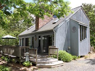 1631 - IMMACULATE, CASUAL SUMMERTIME SIMPLICITY - Edgartown vacation rentals