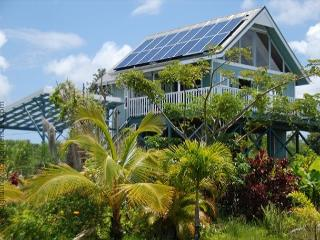 Hale Kukui Ola - Beautiful Home Near Kehena Beach - Pahoa vacation rentals