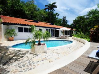 Sanwood Villa - Port Antonio vacation rentals