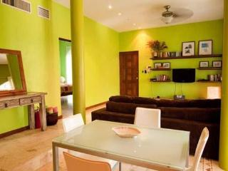 Penthouse Mamitas Beach/Little Italy - Playa del Carmen vacation rentals