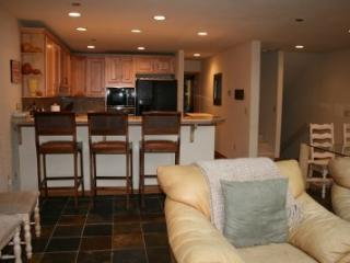 Springs Condo: Located In Warm Springs: Walk to Ski Lifts - Ketchum vacation rentals
