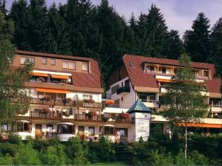 Vacation Apartments in Bad Liebenzell - comfortable, warm, friendly (# 2743) - Baden Wurttemberg vacation rentals