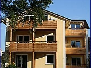 LLAG Luxury Vacation Apartment in Bad Aibling - 344 sqft, new, modern, bright (# 2746) - Bad Aibling vacation rentals