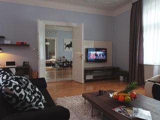 Brehova 3bedroom apartment, heart of Old Town - Prague vacation rentals
