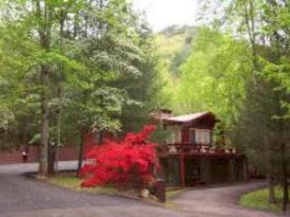 Bearfoot Lodge, spacious and cozy.  Best location! - Townsend vacation rentals