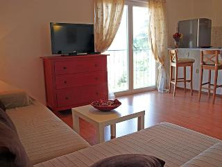 San Elena, sea view for memorable holidays in Rovinj - Istria vacation rentals