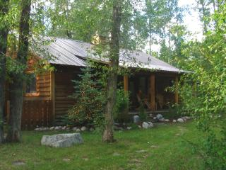 3 bedroom log home, Driggs Idaho in the Tetons - Eastern Idaho vacation rentals
