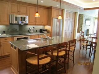 Suite 8 in Vail Village - Vail vacation rentals