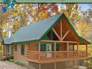 Hummingbird Hill Cabin 6 - Ohio vacation rentals
