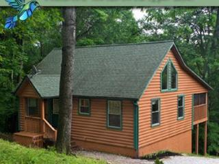 Hummingbird Cabin 2 - Sugar Grove vacation rentals