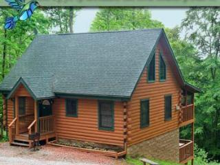 Hummingbird Hill Cabin 3 - Ohio vacation rentals