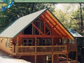 Hummingbird Hill Cabin 4 - Ohio vacation rentals