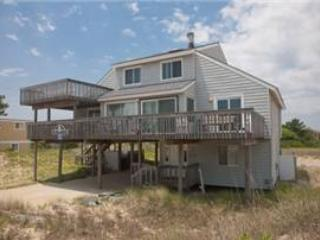 LION IN THE SAND - Image 1 - Virginia Beach - rentals
