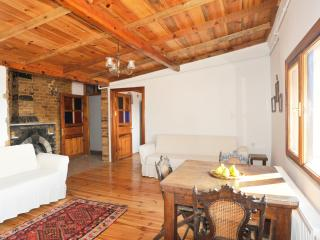 Living Istanbul - 2 br in central Galata with view - Istanbul vacation rentals