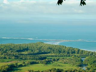 Gorgeous ocean views and Tropical Breezes! - Uvita vacation rentals