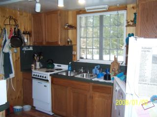 Delightful Mountain Cottage on pristine lake - Chestertown vacation rentals