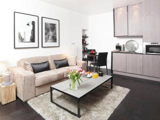 LUXURY ONE BEDROOM APARTMENT AT LE LOUVRE - Paris vacation rentals