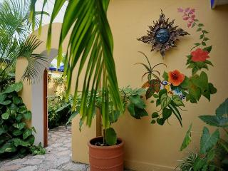 Modern, comfortable well appointed, large studio w king and kitchen - Puerto Morelos vacation rentals