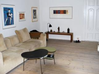 Large Copenhagen apartment at Frederiksberg - Copenhagen vacation rentals
