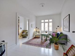 Copenhagen apartment with fantastic views - Copenhagen vacation rentals