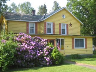 Large 6 bedroom 6 bath house walking to village - Catskills vacation rentals