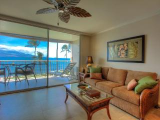 $105 SEPT & OCT! OCEANFRONT Updated inside WIFI AC - Maalaea vacation rentals