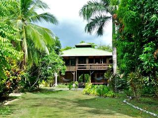Casa Dos Rios, Beachfront, Rainforest Home, W/Surf - Puntarenas vacation rentals