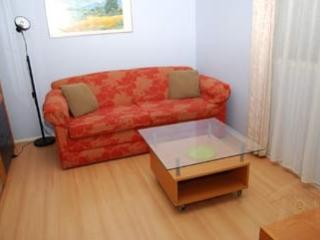 One Bedroom Garden Flat - Annandale vacation rentals