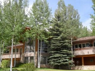 Southwestern Mountain Feel in Snowmass Village, Colorado - Lake George vacation rentals