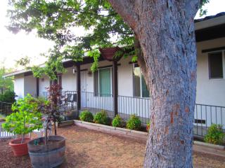 Two bed/2 bath guest house in beautiful Sacramento - Central Valley vacation rentals