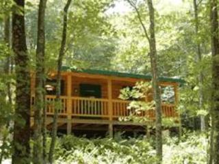 Lakeview Log Cabin Back Porch - Ducks' Nest Lake View Log Cabin with Hot Tub! - Ducktown - rentals
