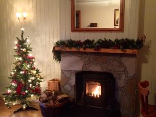 Ash Cottage - Spacious Kingsize Bedroom - Aviemore vacation rentals