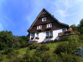Vacation Apartment in Triberg im Schwarzwald - 570 sqft,  (# 2859) - Black Forest vacation rentals