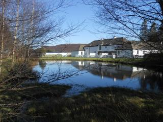 Douglas Fir Cottage - Double and Twin Bedrooms - Aviemore vacation rentals