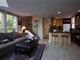 Cornet Creek 303 - Southwest Colorado vacation rentals
